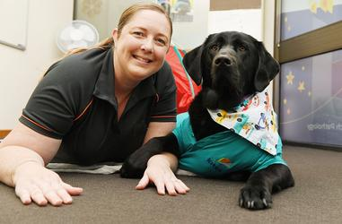 Dog-assisted therapy uses highly trained labradors, like Grady, to help children achieve their therapy goals. [Source: Kites Children's Therapy]